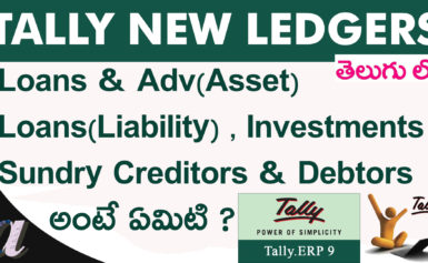 Tally New Ledgers (Loans & Advances(Asset) , Loans (Liability), Investments)